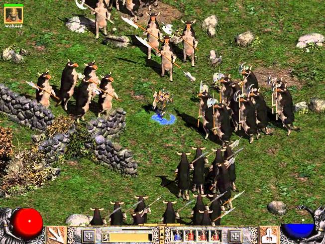 Diablo cows